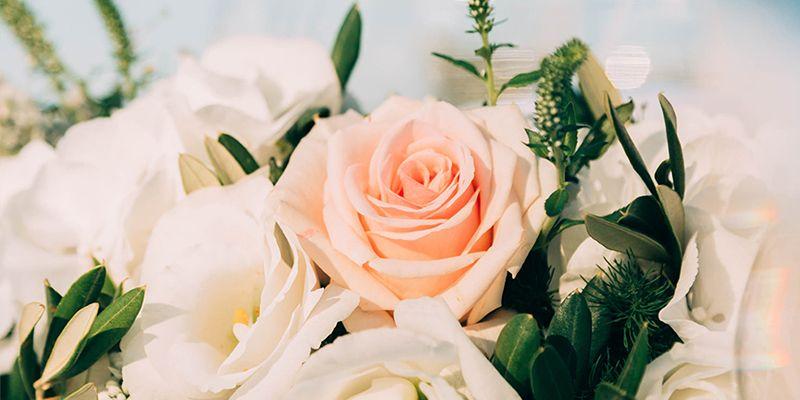 consgili matrimonio primavera puglia